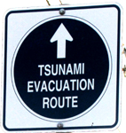 sign Tsunami evacuation route: a road sign the says Tsunami evacuation route