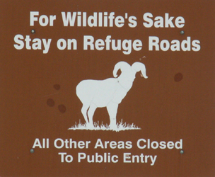 sign for wildlife sake stay on road: sign that says for wildlife sake stay on road