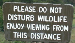 sign view from this distance: