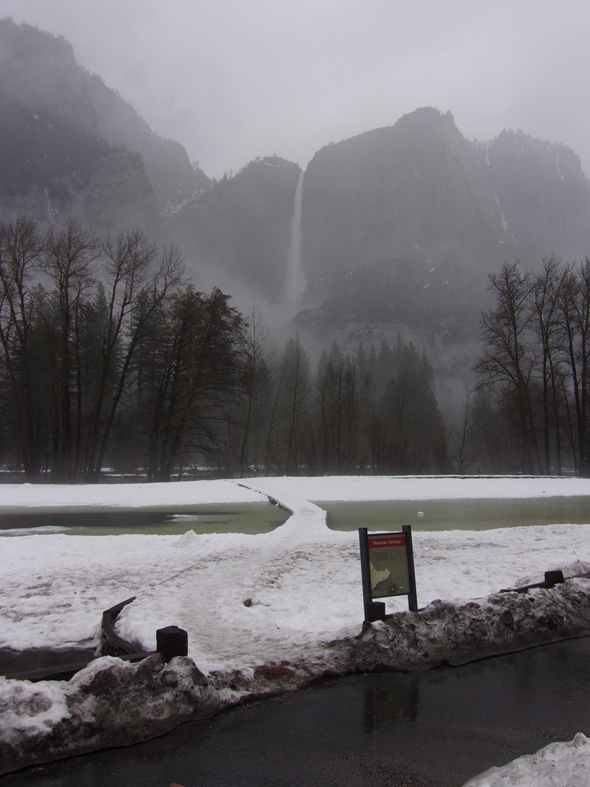 Yosemite Falls and partially flooded meadow