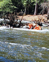 kayak stuck in debris on Merced river NPS photo