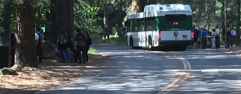 Yosemite Valley Shuttle Bus And Two Stops With People At Them