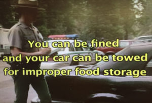 you can be fined and your car can be towed for improper food storage from NPS video