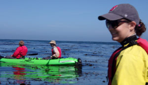 otter climbs up to rear of Jimmy Pham's and Richard Wagner's kayak