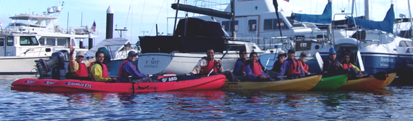 group of kayakers lined up in harbor