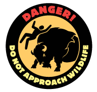 NPS drawing of a bison butting a man into the air with the words danger do not approach wildlife