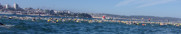 San Francisco skyline and mass of swimmers