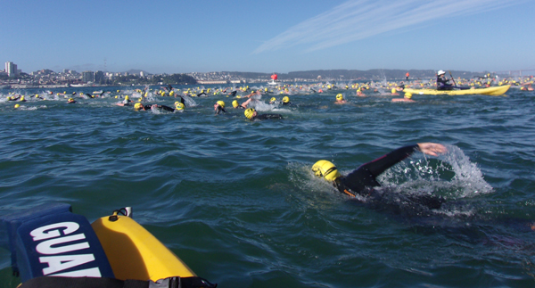 swimmers in motion in bay