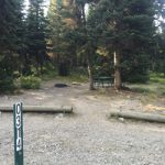 campsite with space behind in forest for privacy
