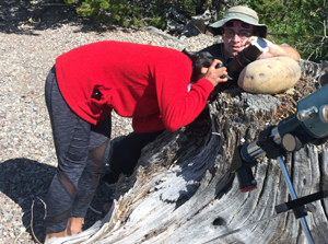 Kim holds her camera on a large rock on a tree stump