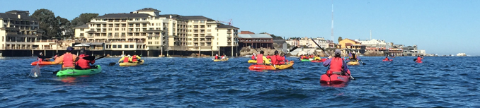 kayakers in Monterey bay with hotels in background
