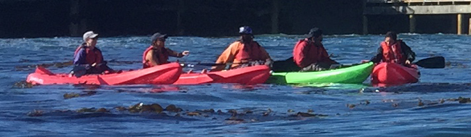 part of a group photo of kayakers