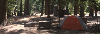 tent, bearbox, firering and  picnic table, restrooms in background