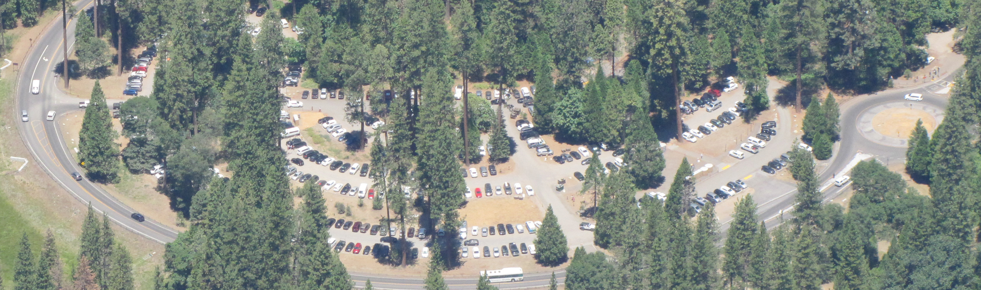 roadway and parking lot in forest