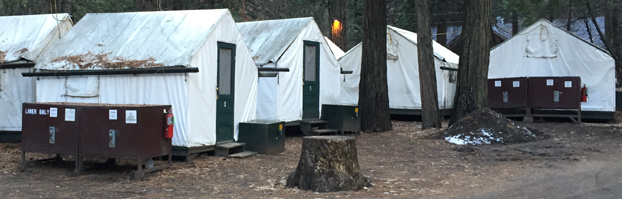 tent cabins with a row of bearboxes in the foreground