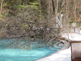 snow on pool deck, large section of a tree in swimming pool