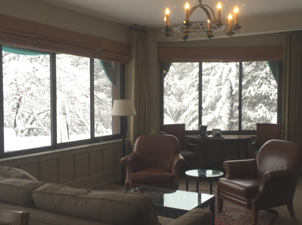 snow covered trees outside large windows