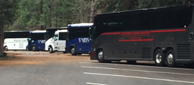 row of large tour buses