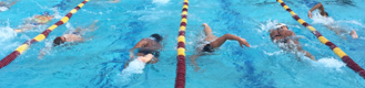 pool lanes with swimmers doing various strokes