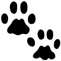 NPS tracks_bobcat