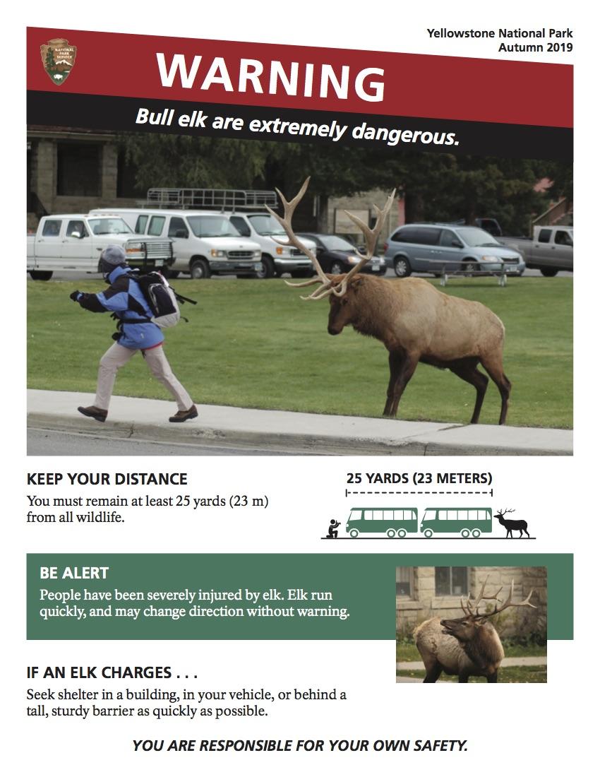 poster of elk