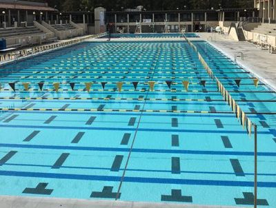 Olympic sized swimming pool