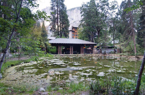 large pond in foreground, building at back of photo