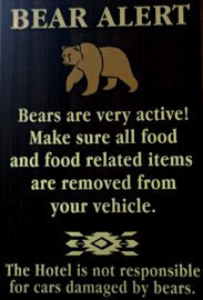 sign that says bears are very active