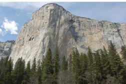 El Capitan with trees in foreground