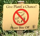 sign that says give plants a chance