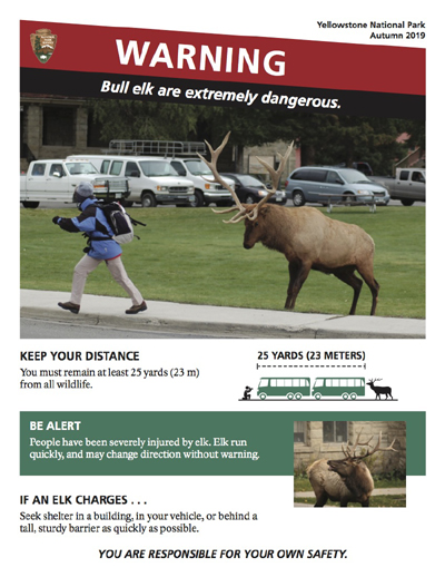 warning poster of woman running from an elk