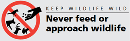 poster says keep wildilfe wild never approach or feed wildlife