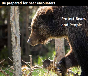 poster says Be prepared for bear encounters, protect bears and people