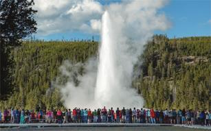 row of people watching geyser