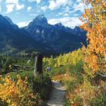trail leading towards peaks