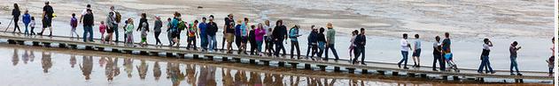 dozens of people close together on boardwalk