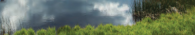 pond with clouds reflection