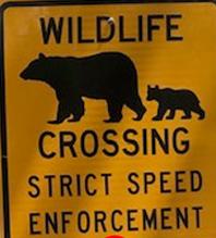 sign wildilfe crossing