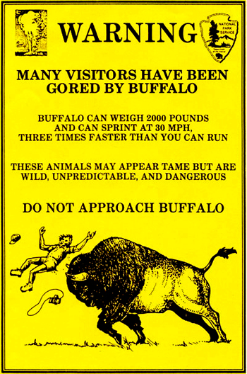 poster that says many visitors have been gored by buffalo