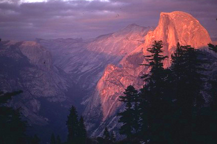 Half Dome and forest