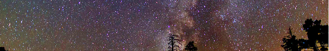 milky way with tips of tops of conifers