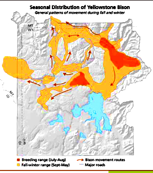 NPS yellowstone bison winter summer range map: map shows July-August breeding range, Sept-May fall-winter range and bison movement routes