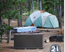 tent, picnic table and bearbox