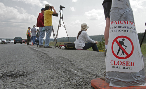 people and tripods along a roadway edge