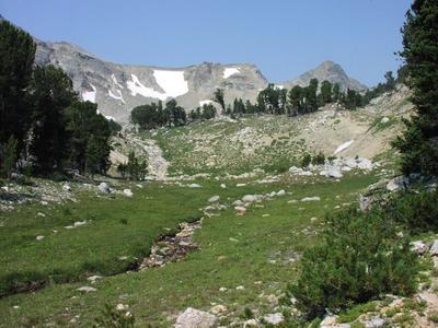 meadow, mountians
