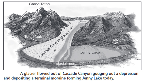 drawing of a glacier that flowed out of Cascade Canyon gouging out a depression and depositing a terminal moraine forming Jenny Lake