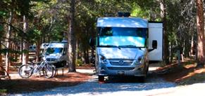 RVs in campsites