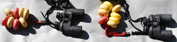 binoculars and flotation
