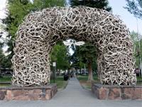 arch made of elk antlers, Jackson Wyoming