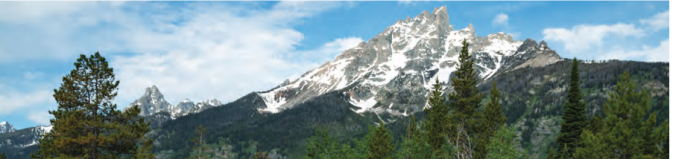snow capped peaks with tree tops in foreground